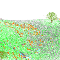 24. Classification results visualized in a 3D LiDAR point cloud (detail from Fig. 4a2)